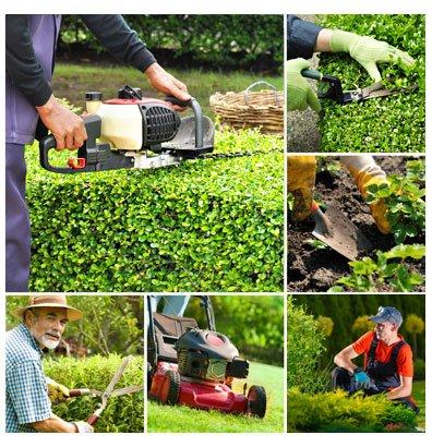 gestionale manutenzione aree verdi