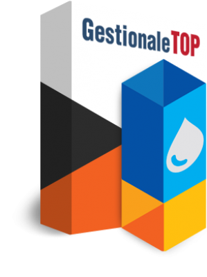 software gestionale top